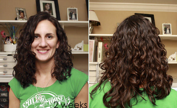 How To Style Permed Hair After Shower Best Curly Girl Method  Before And After  A.steed's.life
