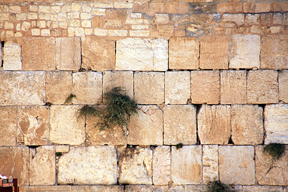 The Western Wall Stones